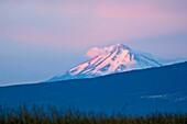 Distant Mount Shasta volcano at sunrise, Cascade Range, Siskiyou County, California