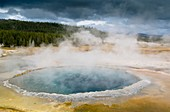 Geothermal steam and water venting out of Crested Pool, Upper Geyser Basin, Yellowstone National Park, Wyoming