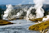 Geothermal vents and steam along the Firehole River, Upper Geyser Basin, Yellowstone National Park, Wyoming