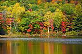 Lake Madrid, USA, Amerika, Vereinigte Staaten, Maine, See, Bäume, Wald, Verfärbung, Indian Summer, Herbst