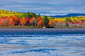 Millinocket Lake, USA, Amerika, Vereinigte Staaten, Maine, See, Wald, Bäume, Ahorn, Espen, Verfärbung, Indian Summer, Herbst, Wo