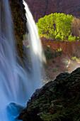 Navajo Falls, USA, Amerika, Vereinigte Staaten, Arizona, Grand Canyon Nationalpark, Tal, Canyon, Fluss Wasserfall, Felsen, Tuffs