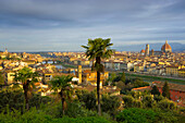 Florence, Italy, Europe, Tuscany, town, city, houses, homes, churches, cathedral, dome, morning light, river, flow, Arno, palms