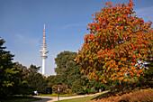 Outside, destination, Planten and Blomen, Germany, Europe, TV tower, television tower, Hamburg, Hanseatic, town, Heinrich, Heinrich hertz tower, autumn, park, tele Michel