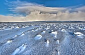 Rangipo desert dawn panorama after snow storm, cloud-covered Mt Ruapehu beyond, Tongariro National Park, New Zealaand.
