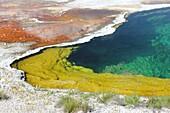 Detail of hot spring , United States , United States of America , USA , West Thumb Geyser Basin , Wyoming , Yellowstone Lake , Yellowstone national park