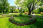 The Public Gardens park in Halifax, Nova Scotia, Canada