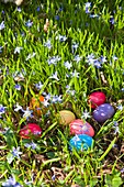 Colorful easter eggs in the grass, Germany, Europe