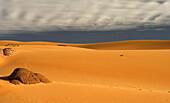 Tagelment Samedat. Tassili Ahaggar. Sahara desert. Algeria.