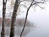Early morning fall nature scenery of The Arrowhead Lake  Arrowhead provincial park, Ontario, Canada
