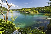 The Plitvice Lakes in the National Park Plitvicka Jezera in Croatia  The lake Kozjak  The Plitvice Lakes are a string of lakes connected by waterfalls  They are in a valley, which becomes a canyon in the lower parts of the National Park  The waterfalls ar