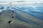 Footprints in sand on beach, west coast, New Zealand
