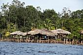 WARAOS HOUSE ON PILES, INDIANS LIVING IN ORINOCO DELTA, VENEZUELA