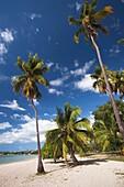 Puerto Rico, West Coast, Boqueron, Balneario Boqueron beach.