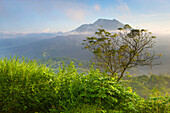 Batur, Indonesia, Asia, Bali, mountain, volcano, volcanism, geology, primeval forest, jungle, rain forest, nature, trees, morning mood