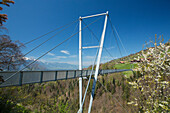 Suspension bridge, Sigriswil, spring, canton Bern, bridge, footpath, Switzerland, Europe,