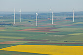 Wind turbines and rapeseed field, bio-energy, renewable energy, near Gunzenhausen, Mittelfranken, Lower Franconia, Franconia, Bavaria, Germany, Europe