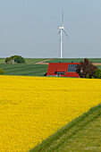 Wind turbines, house with solar cells, photovoltaic cells, rapeseed field, bio-energy, renewable energy, near Gunzenhausen, Mittelfranken, Lower Franconia, Franconia, Bavaria, Germany, Europe