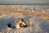 Hudson Bay shoreline in early winter
