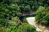 Chagres river bed and rainforest  Chagres National Park, Panama province, Panama, Central America