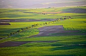 Farmlands, Bureba Region in the Way of Saint James, Burgos province, Castile-Leon, Spain.