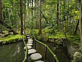 Japanese Zen garden with stepping stones over a pond. Kyoto, Japan.