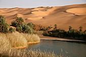 Umm all-Maa lake, Idhan Ubari, Wadi Al Hayaa, Libya