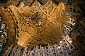 Fan Vault Ceiling in Bishop Alcocks Chapel at Ely Cathedral