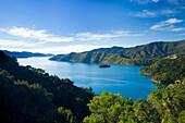 New Zealand, Marlborough, Queen Charlotte Sound  The Queen Charlotte Sound and surrounding hills and native bush
