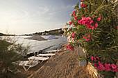 Sandy beach at Gumusluk coast, Bodrum, Mugla, Aegean Sea, Turkish Riviera, Turkey, Europe.