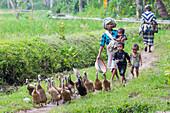 Indonesian farmwoman with children walking between fields, Tetebatu, Lombok, Indonesia