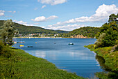Lake Edersee in summertime with boats and fishermen on the shore, Lake Edersee, Hesse, Germany, Europe