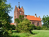 Storks on the Church in Linum, Brandenburg, Germany