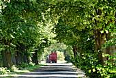 Village Street in Dechtow near Fehrbellin, Brandenburg, Germany
