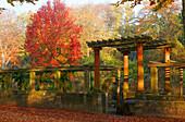Botanical Garden, Mulberry Avenue, Maulbeerallee, Potsdam, Brandenburg, Germany