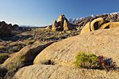 Alabama Hills, nahe Lone Pine, Sierra Nevada, Kalifornien, USA