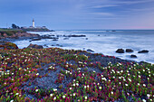 Pigeon Point Lighthouse, Cabrillo Highway 1, California, USA