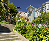 Stairs in Vallejo Street, Telegraph Hill, San Francisco, California, USA