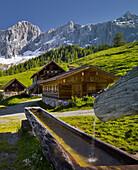 Neustattalm, Dachstein, Styria, Austria