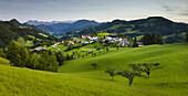 Maria Neustift, Alpenvorland, Oberösterreich, Österreich