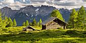Holzhütte on the Winkleralm, Lienz Dolomites, East Tyrol, Tyrol, Austria