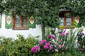 windows of an old farmhouse with garden and pear tree, Seehausen am Staffelssee, near Murnau, district Garmisch-Partenkirchen, Blue Land, Bavarian alpine foreland, Upper Bavaria, Bavaria, Germany, Europe