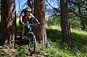 mountain biker between trees on a single-trail, Trentino Italy
