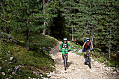 two mountain bikers on a forest trail, Trentino, Italy