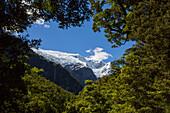 Rob Roy Glacier, view of the Rob Roy Glacier Trek, Mount Aspiring National Park, South Island, New Zealand