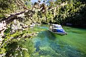 Motorboot in der Bucht Falls Creek, Abel Tasman Nationalpark, Südinsel, Neuseeland