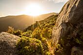 Sonnenuntergang bei den Castle Rocks, Abel Tasman Nationalpark, Südinsel, Neuseeland