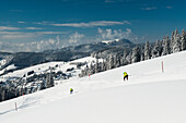 Skiers and winter landscape, Todtnauberg, Black Forest, Baden-Wuerttemberg, Germany