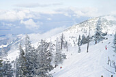 Skiing in a Winter mountain landscape, Kampenwand, Chiemsee, Alps, Bavaria, Germany