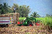 Farming in Erawan National Park near Kanchanaburi, Thailand